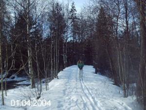 Webb_skidåkning